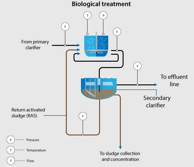 Wastewater Industry Biological Treatment
